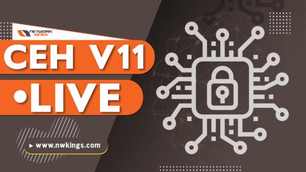 CEH V11 LIVE